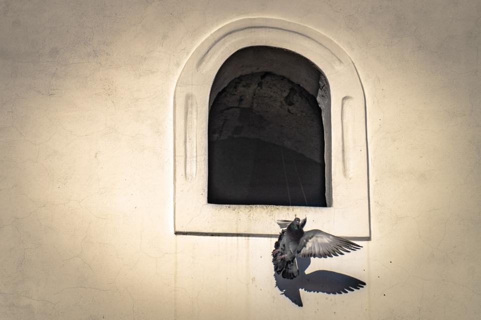 Huszár Szilamér - Angyalok szárnyán