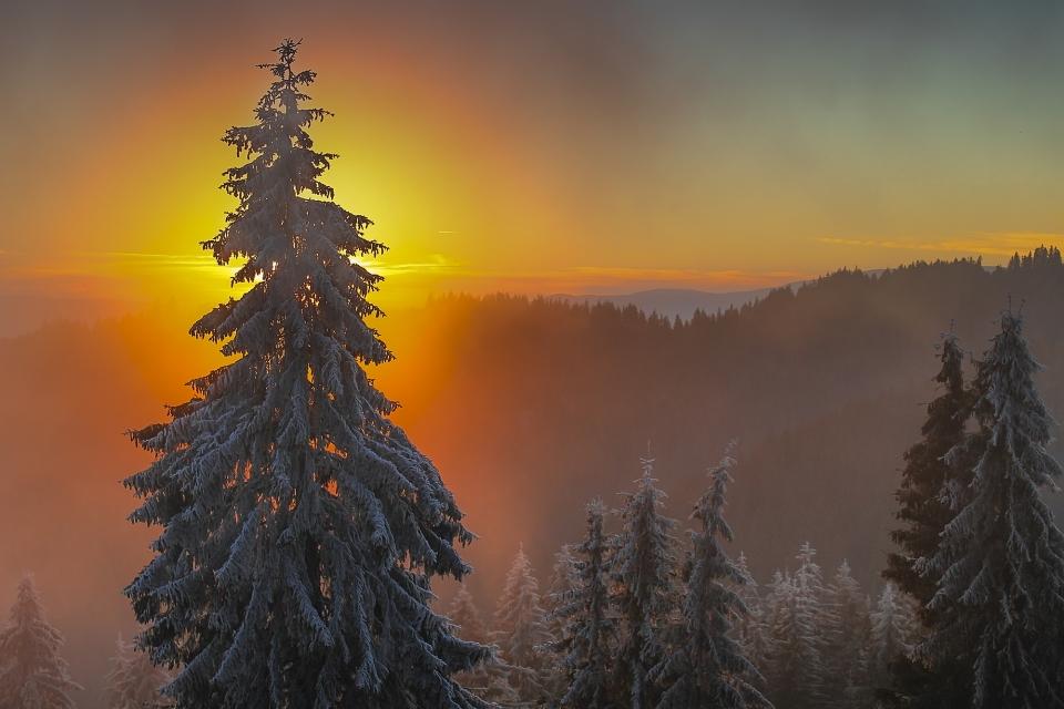 Héjja Árpád - Decemberi naplemente a Csiki hegyekben